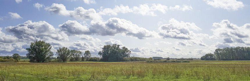Landschaft Weesower Luch