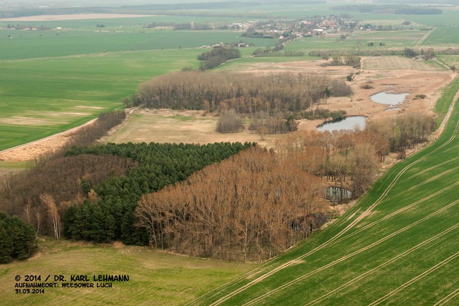 Luftbild Kleingewässer und Igelpfuhl