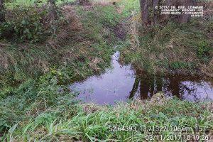 Hoher Graben Zufluss vom Elsengraben