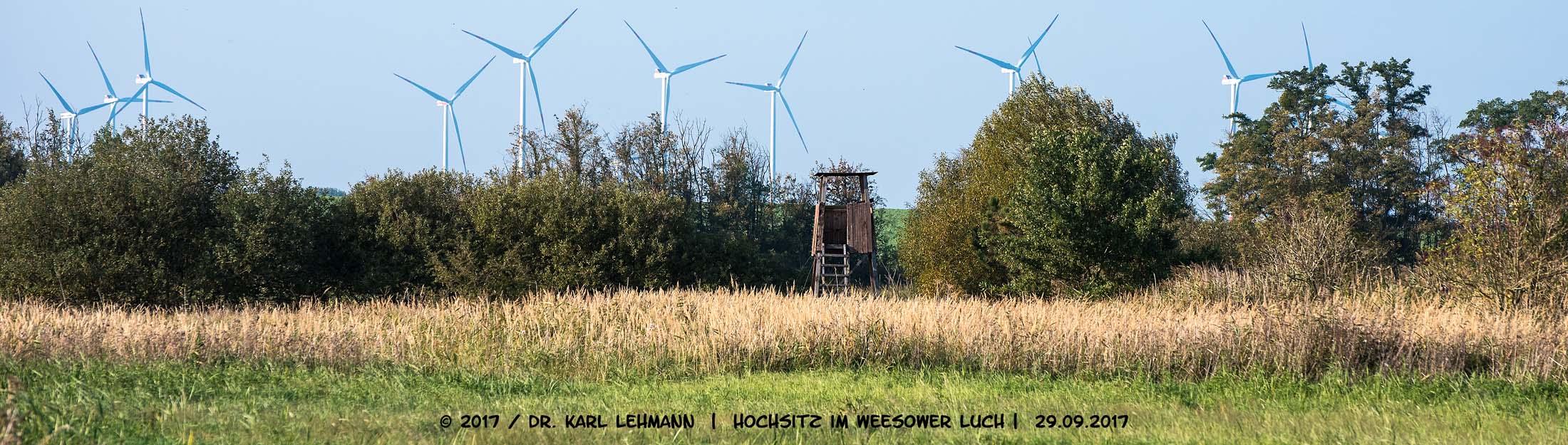 Beitragsbild Hochsitz im Weesower Luch