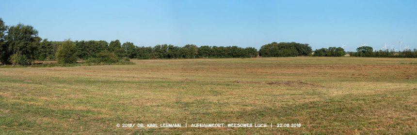 2. Mahd der Grünlandflächen / Header