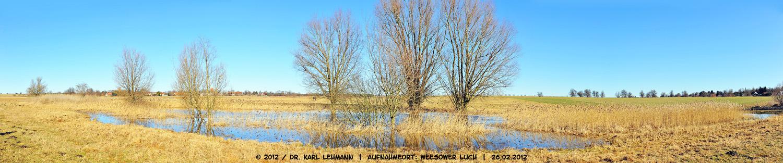 Gnatzpfuhl im Winter 2012