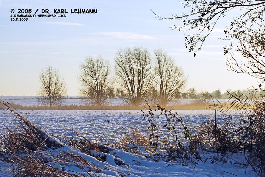 Gnatzpfuhl im Winter 2008